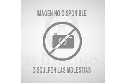 CABEZADA PICADERO S/AHOG 3P FORRADA